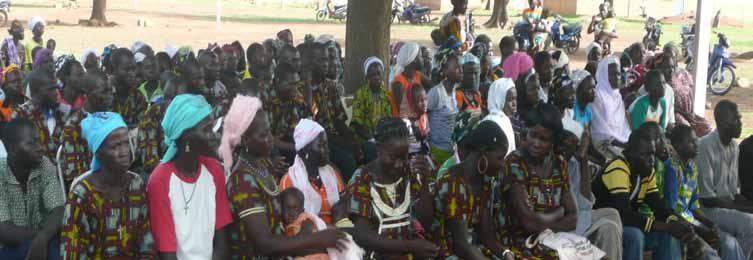 Stand van zaken herbebossing in Kogo